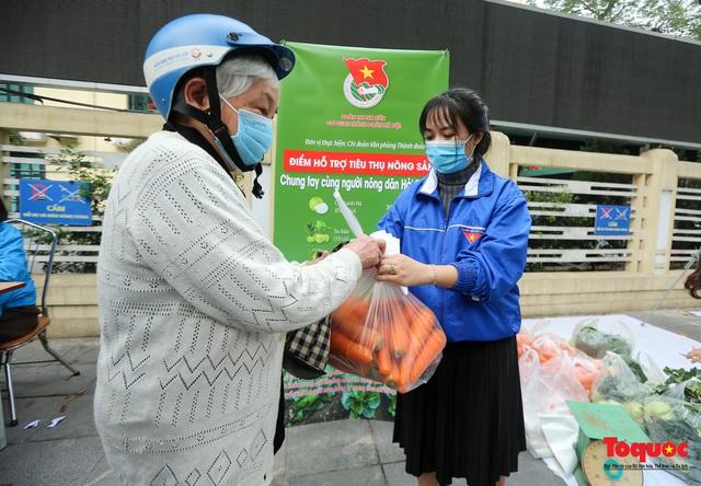 Hà Nội: Chung tay giải cứu nông sản giúp người nông dân Hải Dương - Ảnh 3.