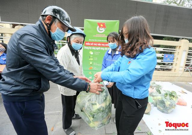 Hà Nội: Chung tay giải cứu nông sản giúp người nông dân Hải Dương - Ảnh 6.