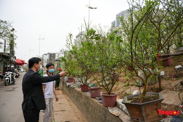 Sau Tết Nguyên đán người dân thủ đô bỏ tiền triệu mua cây bưởi về chơi - Ảnh 9.