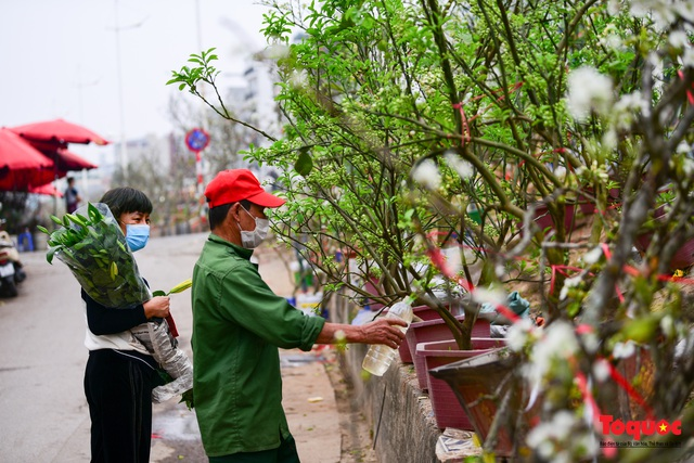 Sau Tết Nguyên đán người dân thủ đô bỏ tiền triệu mua cây bưởi về chơi - Ảnh 3.