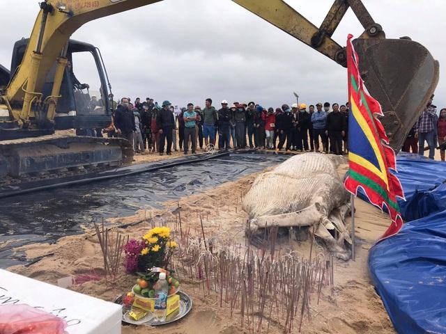 Cá voi nặng khoảng 2 tấn dạt vào bờ biển Quảng Bình - Ảnh 2.