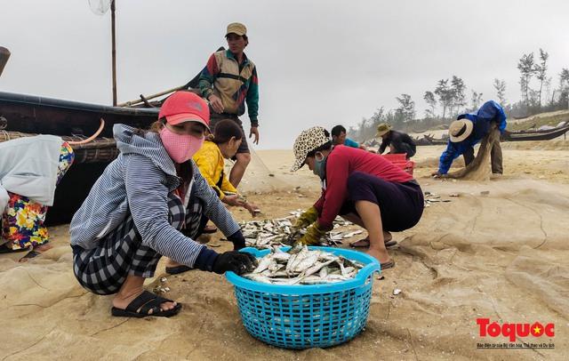 Ngư dân Thừa Thiên Huế phấn khởi ra khơi bắt đầu vào vụ đánh bắt cá trích - Ảnh 4.