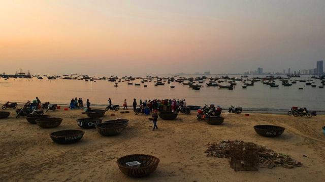 Ruốc biển tươi rói bên bờ biển Đà Nẵng - Ảnh 1.