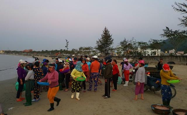 Ruốc biển tươi rói bên bờ biển Đà Nẵng - Ảnh 2.