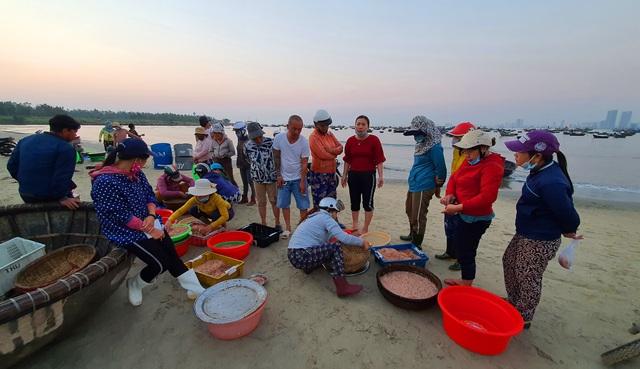 Ruốc biển tươi rói bên bờ biển Đà Nẵng - Ảnh 3.