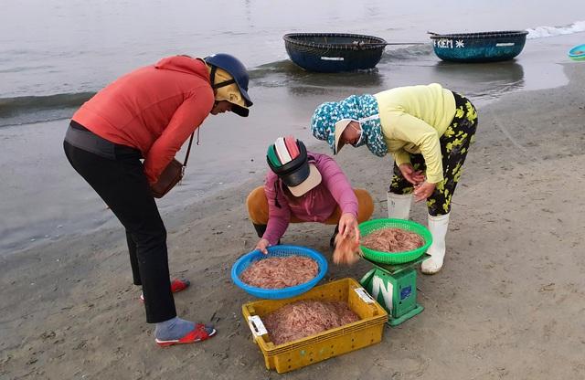 Ruốc biển tươi rói bên bờ biển Đà Nẵng - Ảnh 9.