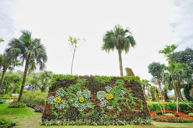 Thưởng thức ngàn hoa khoe sắc trên đồi cao tại lễ hội hoa Hạ Long - Ảnh 9.