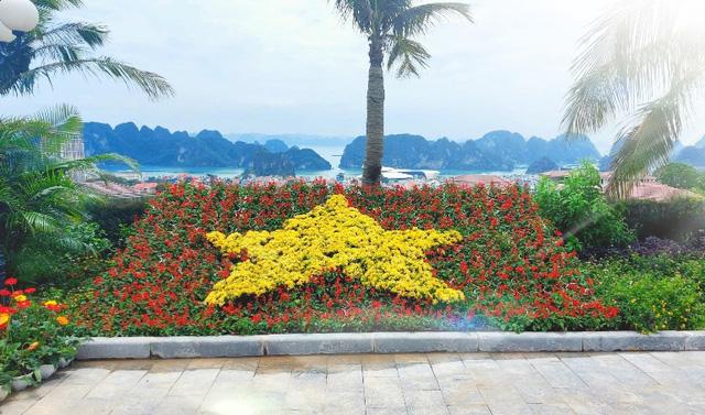 Thưởng thức ngàn hoa khoe sắc trên đồi cao tại lễ hội hoa Hạ Long - Ảnh 10.