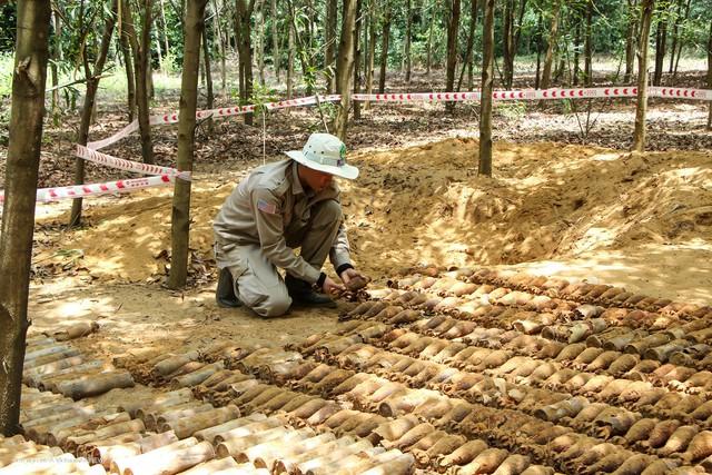Phát hiện hầm chứa gần 500 vật liệu nổ giữa rừng keo của người dân - Ảnh 1.