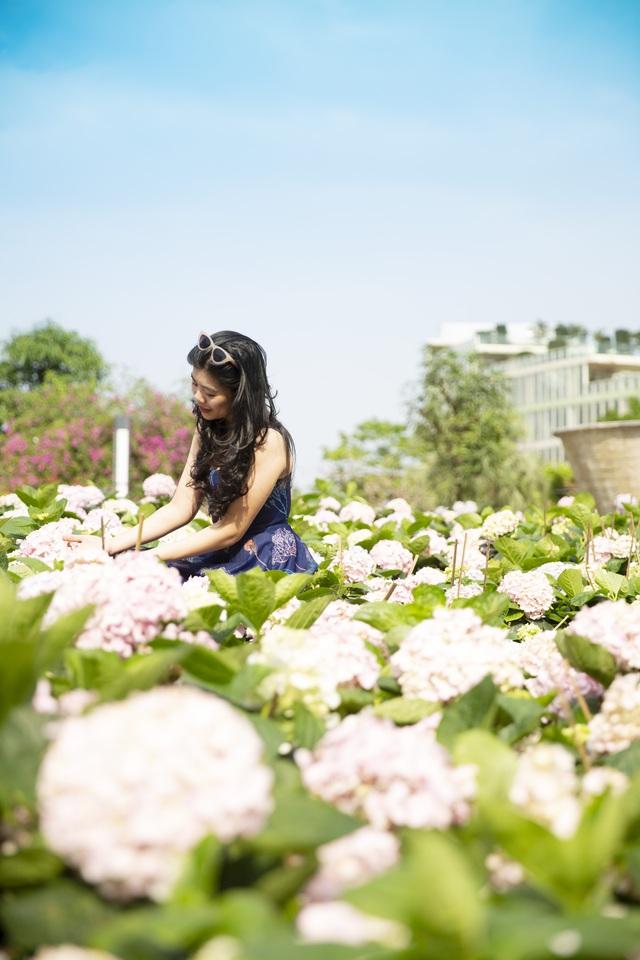 Du khách háo hức check in trước thềm Lễ hội hoa Sầm Sơn - Ảnh 5.