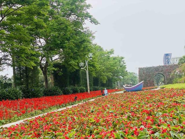 Du khách háo hức check in trước thềm Lễ hội hoa Sầm Sơn - Ảnh 8.