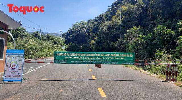 Biển Đà Nẵng vắng hoe, tạm đóng cửa bán đảo Sơn Trà - Ảnh 12.