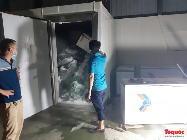 Phát hiện 540kg ma túy giấu trong dạ dày lợn và mô tơ điện có gắn định vị theo dõi - Ảnh 4.