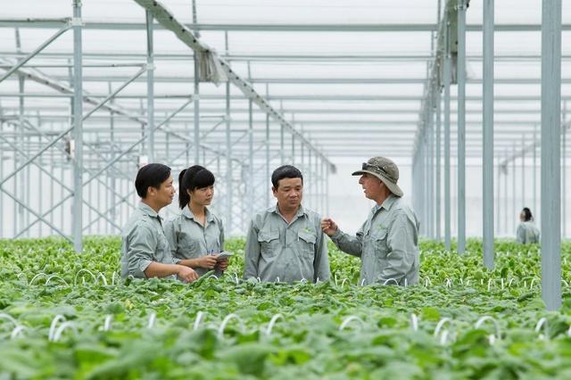 Thành lập BCĐ tổng kết 20 năm đổi mới, phát triển kinh tế tập thể - Ảnh 1.