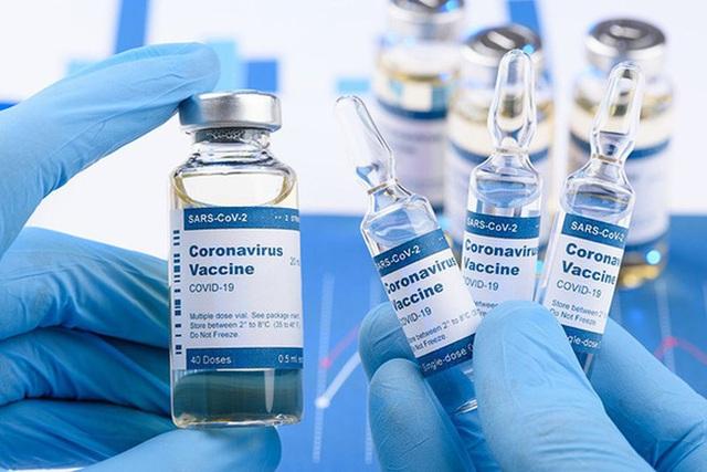 Nhiều quốc gia sẵn sàng hỗ trợ Việt Nam trong tiếp cận nguồn vắc xin COVID-19 - Ảnh 1.