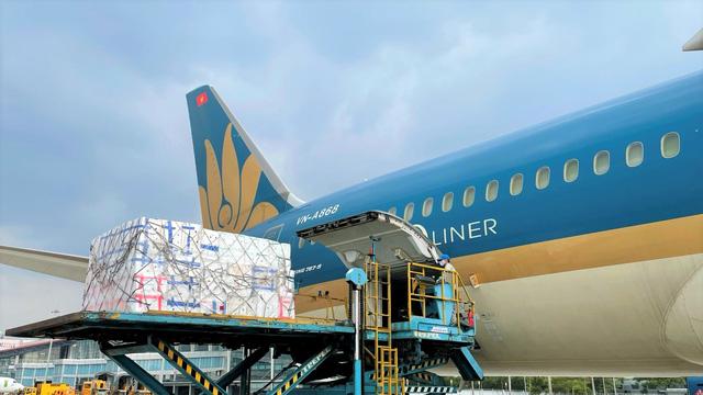 Vietnam Airlines chuyển sang vận tải hàng hóa, bù đắp doanh thu - Ảnh 1.