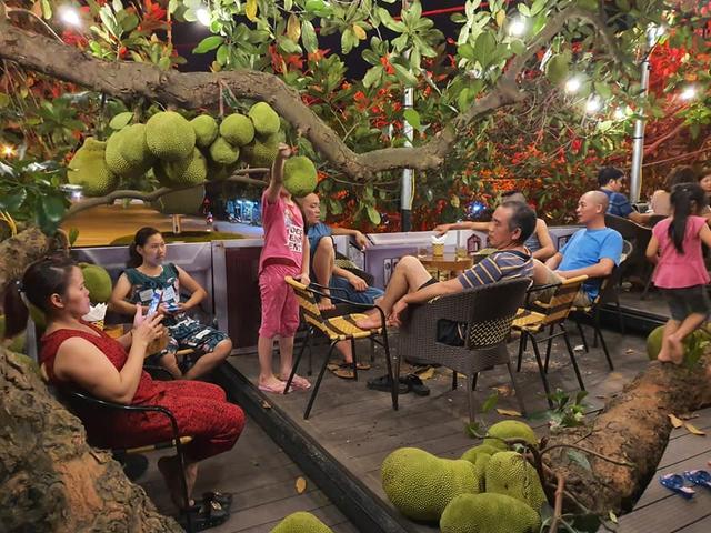 Quán cà phê độc lạ ở Tuyên Quang có cây mít trĩu quả mọc giữa nhà  - Ảnh 8.