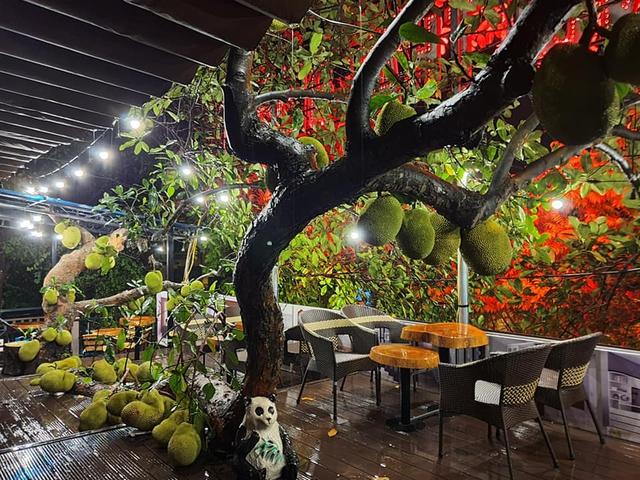 Quán cà phê độc lạ ở Tuyên Quang có cây mít trĩu quả mọc giữa nhà  - Ảnh 1.