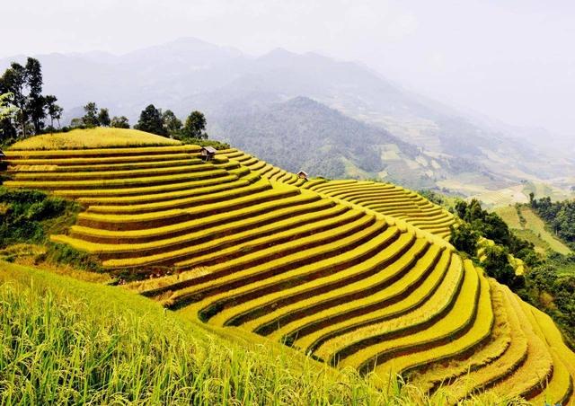 """Hà Giang: Dừng tổ chức Tuần văn hóa du lịch """"Qua những miền di sản ruộng bậc thang Hoàng Su Phì"""" - Ảnh 1."""