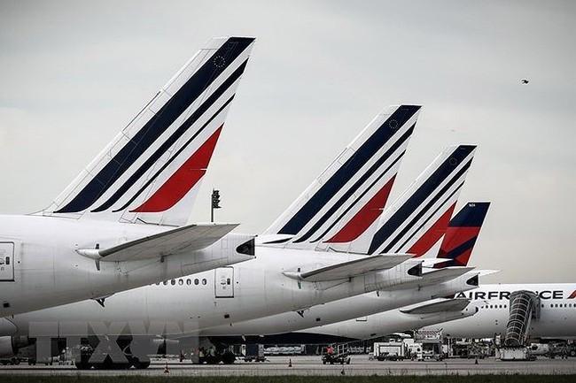 Miễn thuế hàng hóa nhập khẩu của Hãng hàng không Pháp - Ảnh 1.