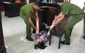 Nữ bảo mẫu dùng dép tát vào mặt trẻ ngất xỉu khi bị tuyên 18 tháng tù