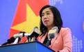 Bộ Ngoại giao thông tin về việc tiếp nhận công dân gốc Việt tại Mỹ