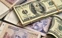 Phạt đến 100 triệu đồng đối với doanh nghiệp bảo hiểm nhân thọ có hành vi rửa tiền