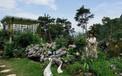 Ngôi nhà trên đồi với tầm nhìn xanh mát yên bình của người phụ nữ nghỉ hưu ở tuổi 42, rời thành thị về quê sinh sống
