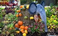 Đặc sắc triển lãm bí ngô Halloween tại Slovenia