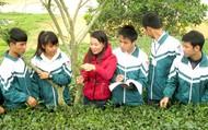 Chương trình giáo dục phổ thông mới: trẻ học kiến thức gắn với thực tiễn