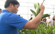 Thu 30 tỉ/năm nhờ làm nông nghiệp công nghệ cao