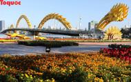 Người dân và du khách mê mẩn đường hoa Đà Nẵng Tết Kỷ Hợi 2019