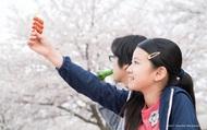 Hấp dẫn Liên hoan phim Nhật Bản 2019