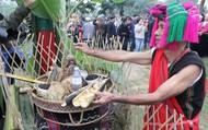 Tái hiện Lễ hội A Da truyền thống của đồng bào Tà Ôi