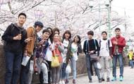 Bằng giả xuất hiện, Đại sứ quán Nhật Bản siết chặt quy định xin visa