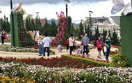 300.000 lượt khách đến Lâm Đồng dịp Tết Nguyên đán Kỷ Hợi 2019