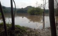 Nghệ An: Bé trai 6 tuổi mất tích được tìm thấy trên sông đã tử vong