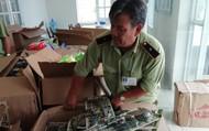 Thu giữ 33 thùng carton chứa đầy các loại súng do Trung Quốc sản xuất