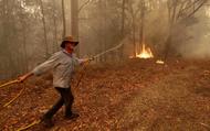 Quân đội Australia vào cuộc, cử 3.000 lính đối phó khủng hoảng cháy rừng