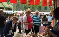Sắc màu Việt Nam tại Lễ hội Đa văn hóa ở Australia