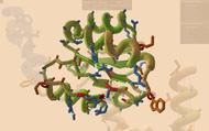 Bạn có thể chơi game để giúp các nhà khoa học tìm ra thuốc chữa Covid-19