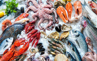 Cơ hội nào cho cổ phiếu ngành thủy sản?
