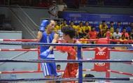 Khởi tranh Cup các câu lạc bộ Boxing toàn quốc năm 2020