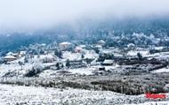 Cận cảnh băng tuyết phủ trắng các triền núi ở Y Tý