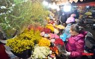 Nhộn nhịp chợ hoa đêm ngày đầu tháng Chạp