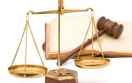 Tập huấn triển khai các văn bản quy phạm pháp luật mới trong lĩnh vực thư viện