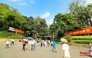 Người dân đổ về đền Hùng, công tác an ninh, phòng dịch được đảm bảo an toàn trước ngày Giỗ Tổ