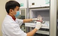 Lượng máu dự trữ tại BV Chợ Rẫy gần chạm đáy
