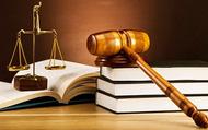 Tổ chức Hội nghị tập huấn triển khai các văn bản quy phạm pháp luật mới trong lĩnh vực thư viện