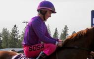 Ngã ngựa, VĐV tử nạn ở tuổi 29, đau lòng hơn khi chiến mã do chính tay người vợ hiền huấn luyện